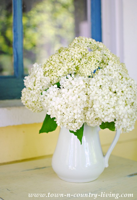 Hydrangeas in White Ironstone make a simple summer bouquet