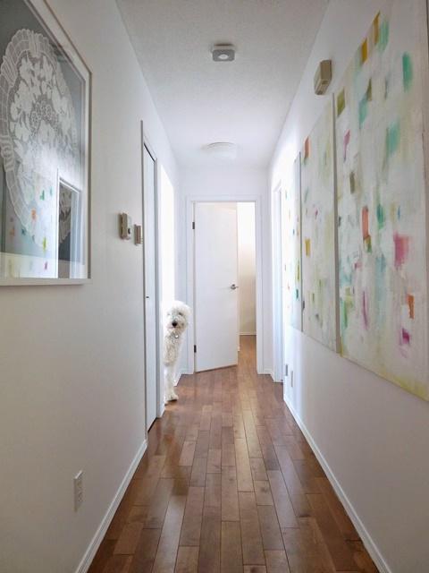White hallway with polished wood floors