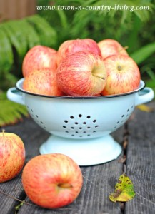 Farmhouse Friday ~ Baked Apple Chips