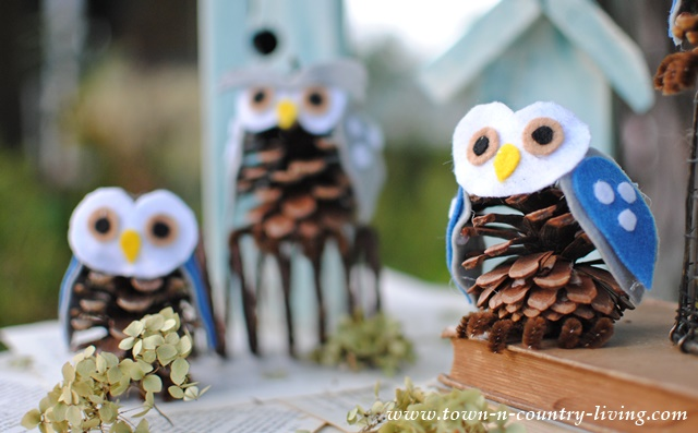 Pine Cone Owls Town Amp Country Living