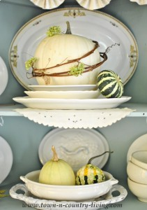 Displaying Dishes, Farmhouse Style!
