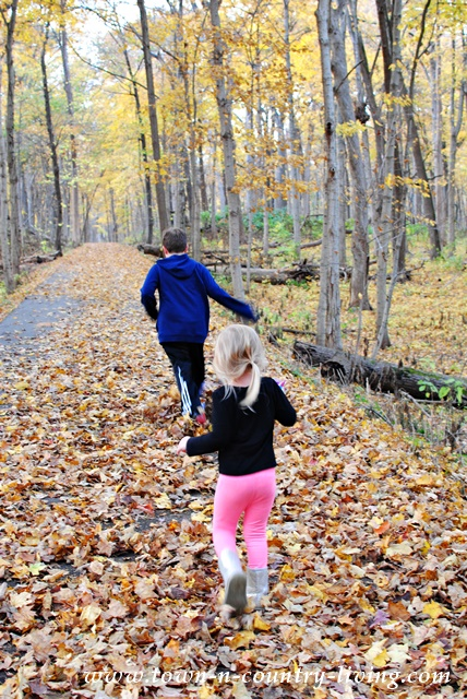 Discovering a Fall Trail