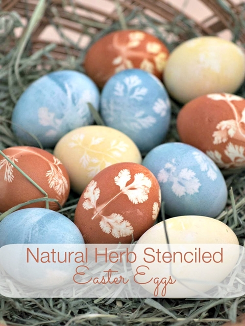 Stenciled Herb Dyed Eggs