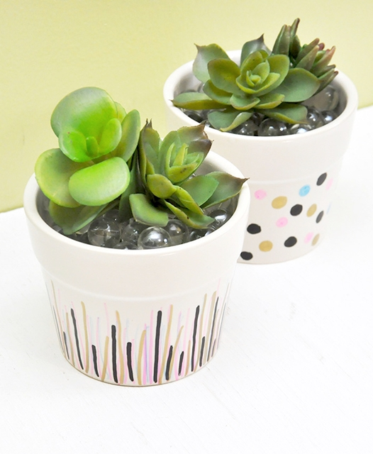 Succulent Pots Decorated with Sharpies