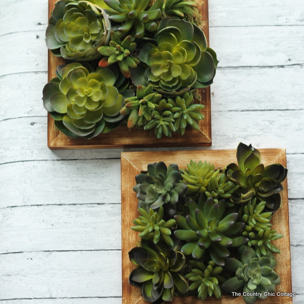 Faux Succulent Wall Hanging