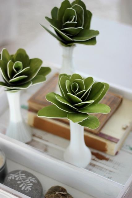 Foam Sheet Succulents