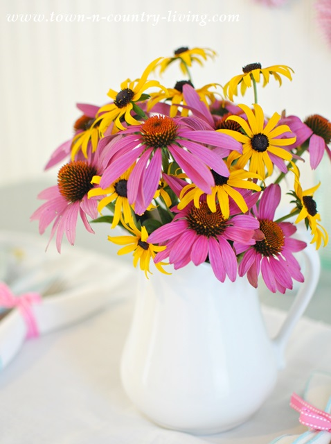 Coneflowers and Rudbeckia and other Farmhouse Flowers