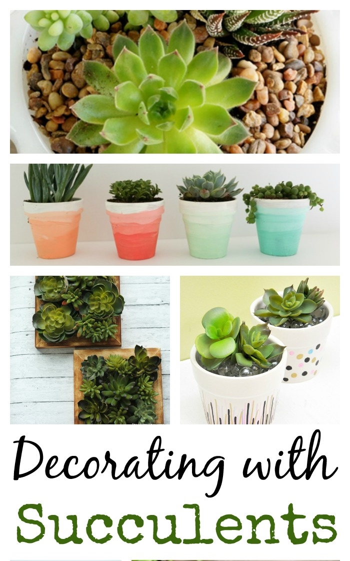 13 Ideas For Decorating With Succulents Town Country Living