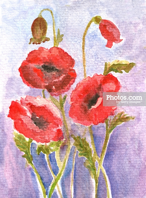 Watercolor Poppies and Other Wall Art Ideas