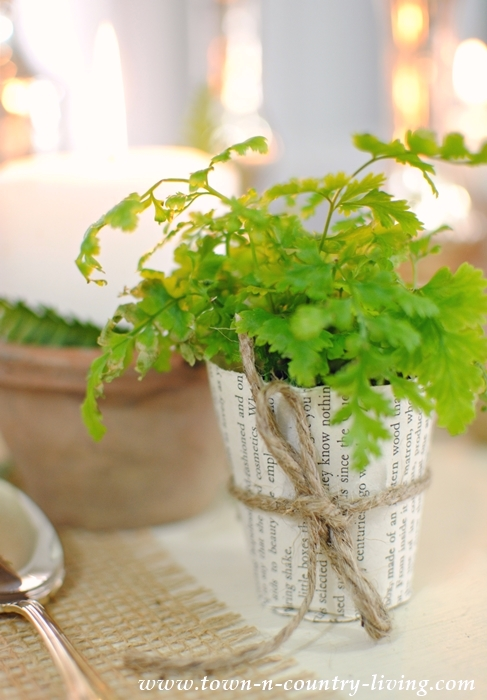 Book Page Plant Pot with Fern