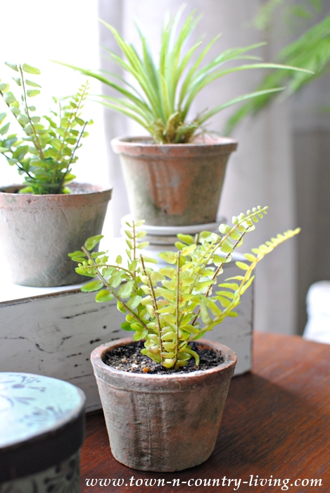 Simple Faux Ferns in Garden Pots