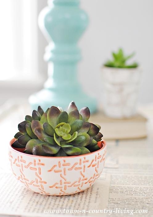 Simple Succulent in Coral Fingertip Bowl