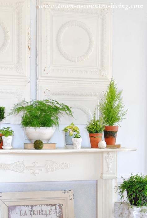 Botanic Style Spring Mantel