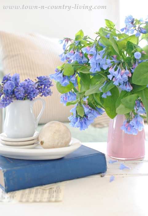 Style a Coffee Table with Fresh Flowers, like beautiful Virginia Bluebells