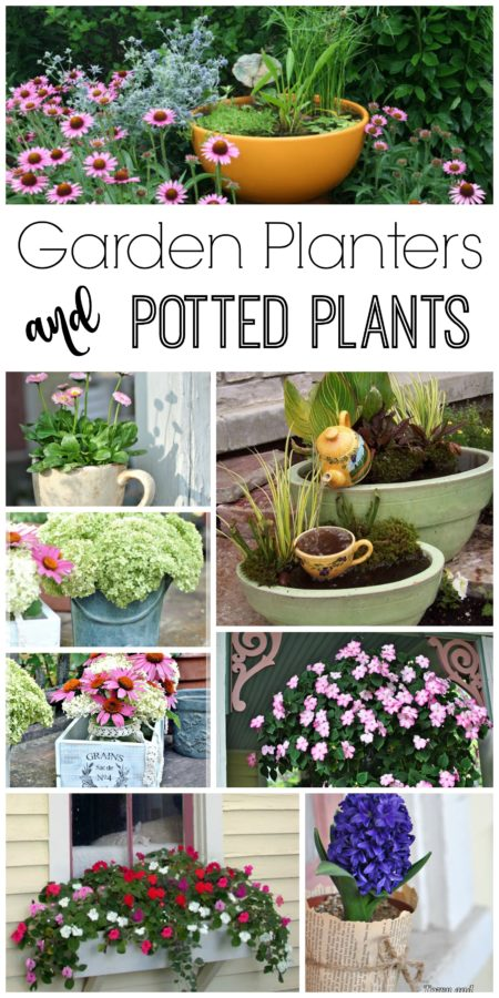 Garden Planters and Potted Plant Ideas