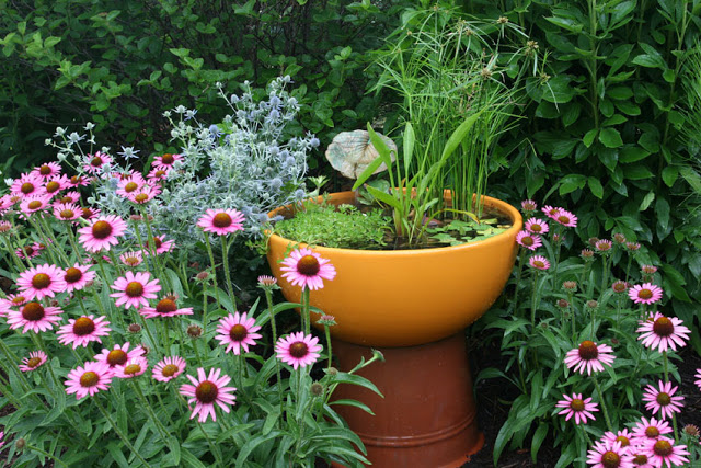 Orange Pot Used as Container Water Garden