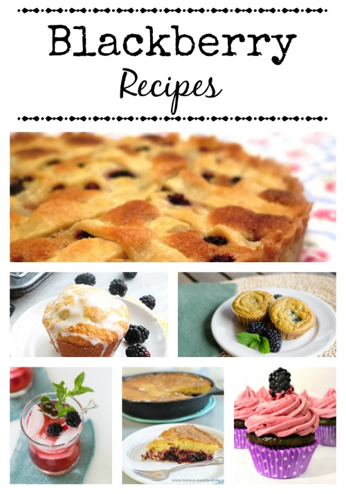 Collection of Blackberry Recipes