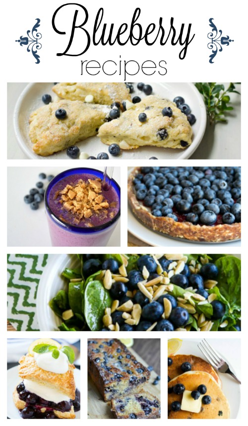 Blueberry Recipes and other Berry Recipes You'll Love