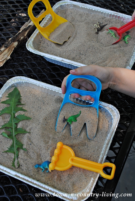Creating a Dinosaur Dig for Kids
