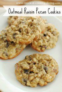 Oatmeal Raisin Pecan Cookies: Mmm, Good!