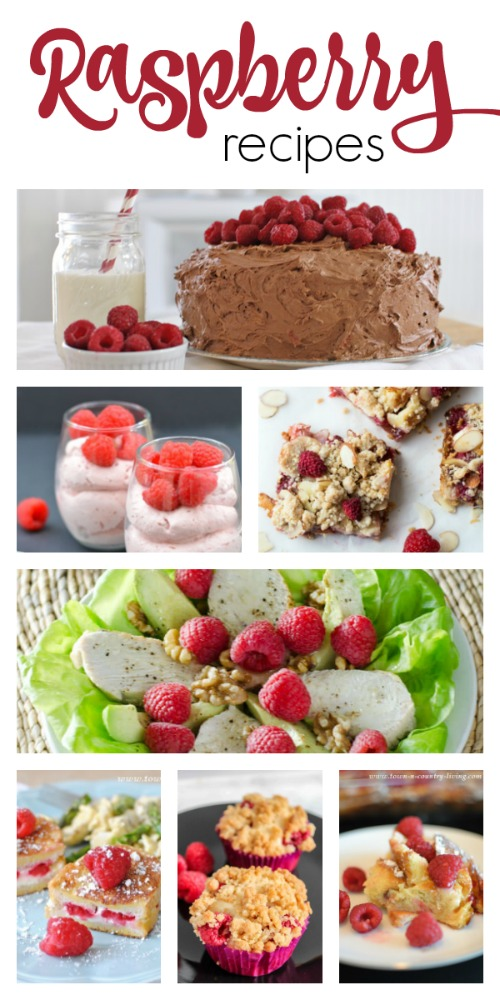 Raspberry Recipes and Other Berry Recipes You'll Love