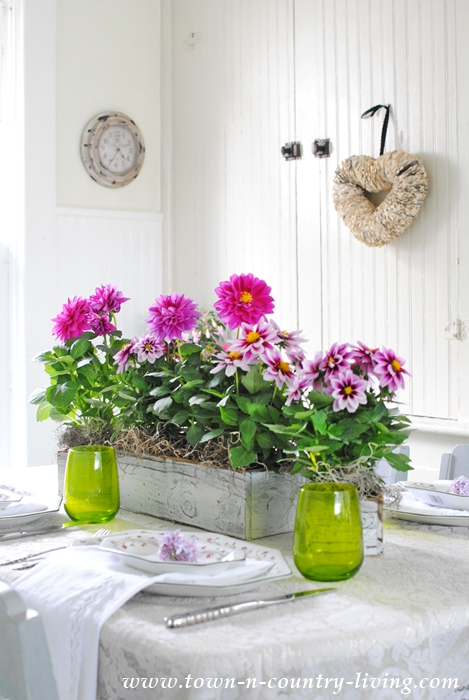 Dahlia Centerpiece for Pink and Green Table Setting