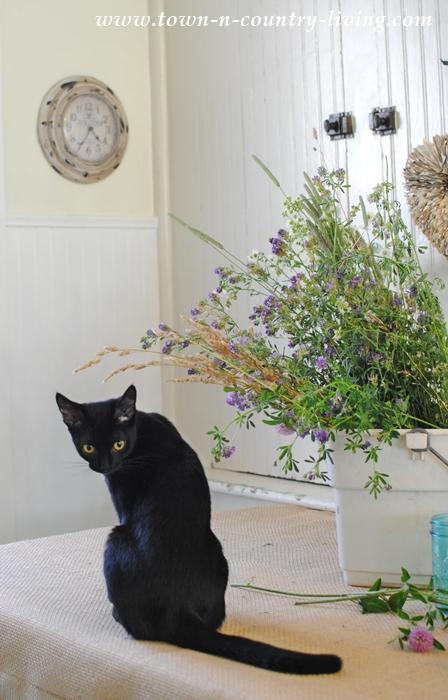 Bella helps arrange flowers from the meadow.