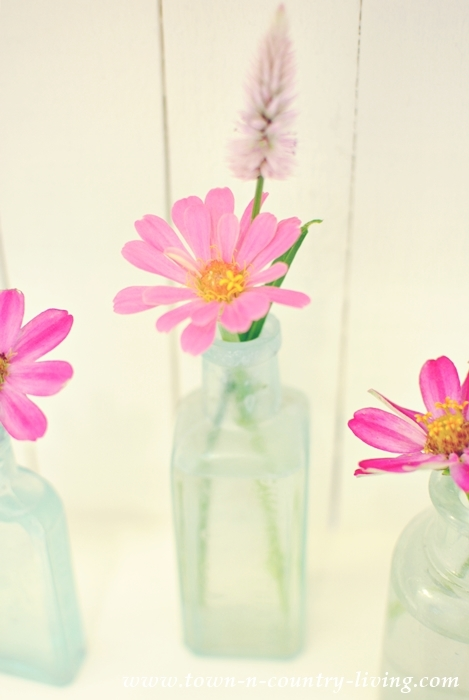 Pink Zinnias in Vintage Aqua Bottles