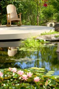 Create a Paradise with a Backyard Pond