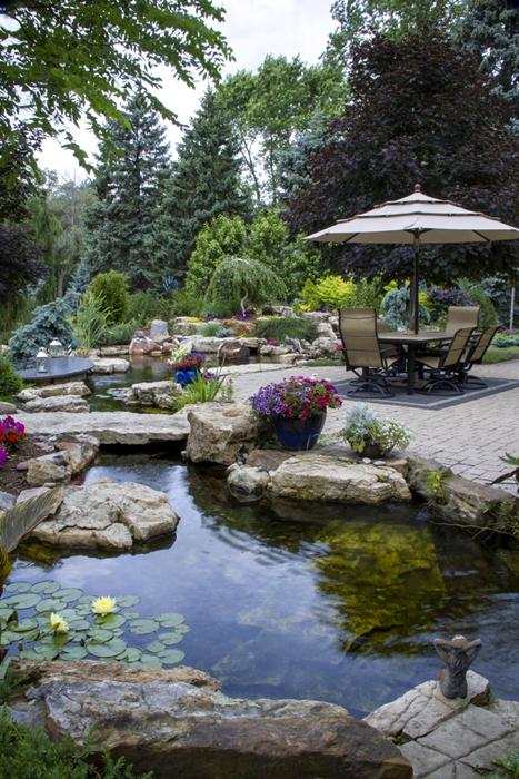 Stunning Backyard Pond with Patio and Stone Bridge