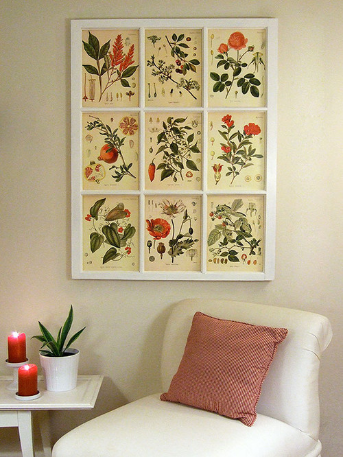 Colorful botanical prints arranged in an old window