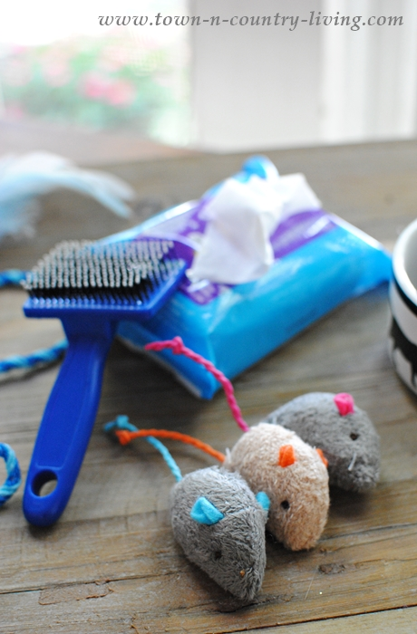 Essentials for traveling with your cat. Kitty wipes, a cat brush, and favorite toys.