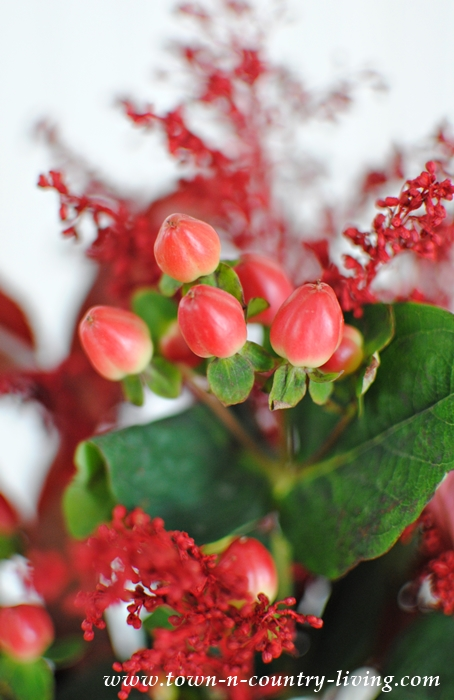 Arranging Flowers with Red Berries