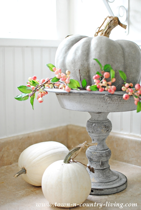 Fall Vignette with Gray and White Pumpkins