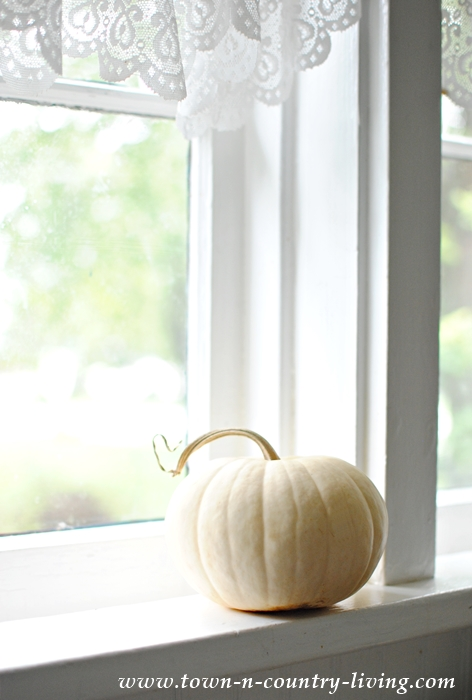 Simple White Pumpkin in a Farmhouse Windowsill