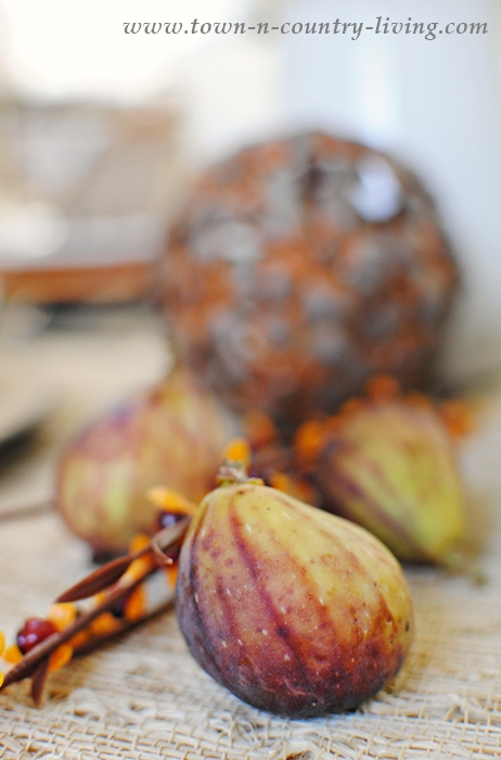 Figs and Bittersweet in a Fall Table Setting