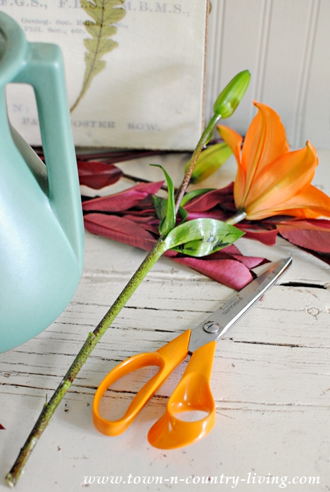 Flower Arranging Tips for Beautiful Bouquets
