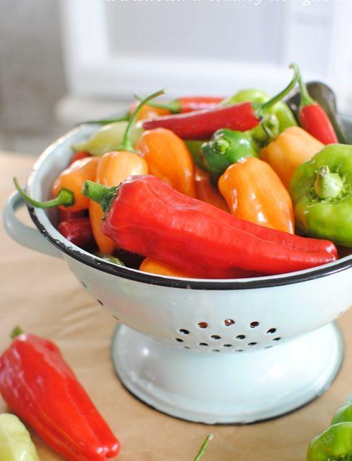 Garden Fresh Peppers Ready for Freezing