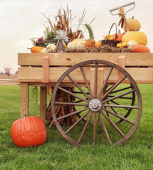 Rustic fall wagon