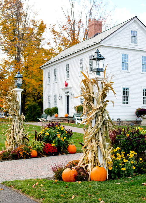 Outdoor Fall Decorating with Mums, Pumpkins, and Corn Stalks