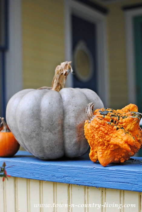 Fun Facts about Pumpkins