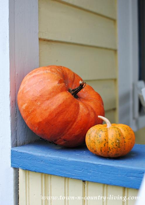 Fun Trivia about Pumpkins