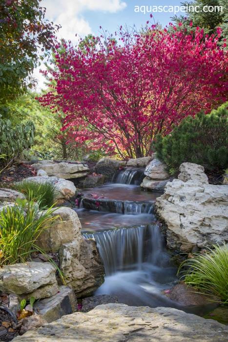 Burning Bush sets off a stunning backyard waterfall
