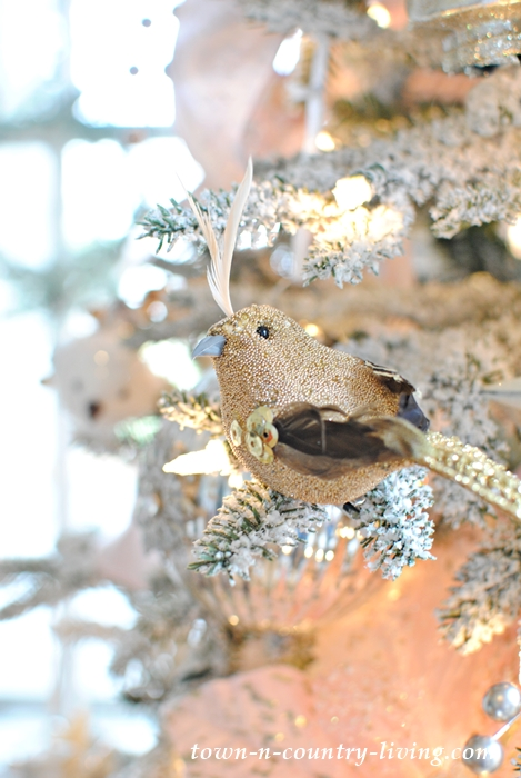 A Quail in a Pink Champagne Tree