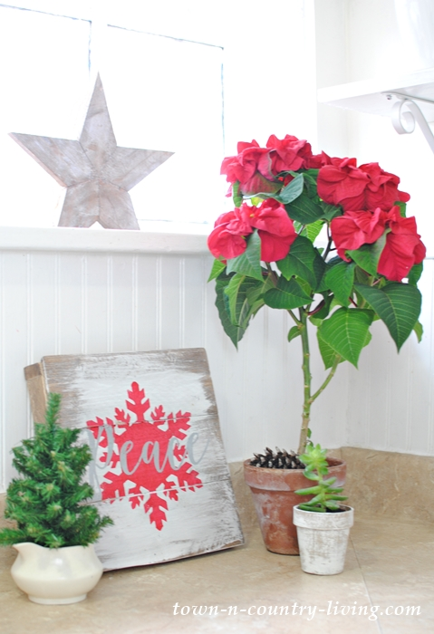 Poinsettia Topiary