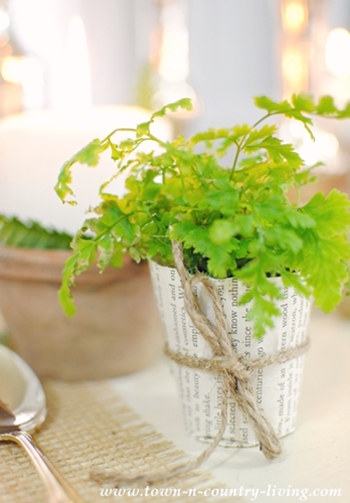 Book Page Plant Pot with Fern the Shade of Pantone Greenery