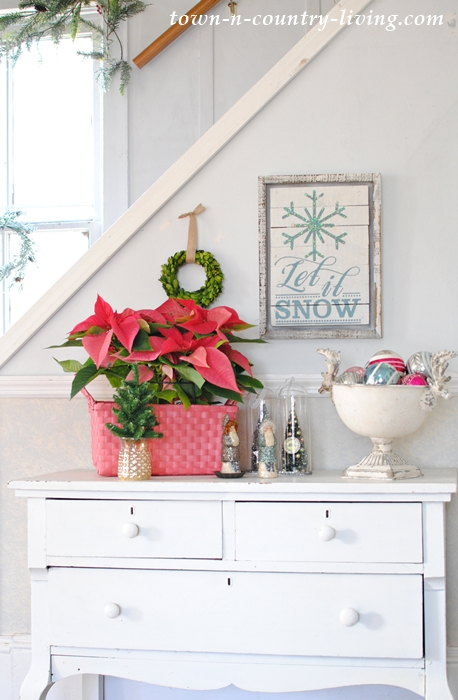 Place poinsettias in a bright location for at least 6 hours per day
