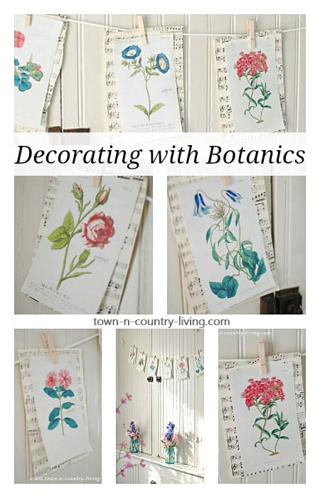 Decorating with Botanics. Ideas and Resources for Free Downloads