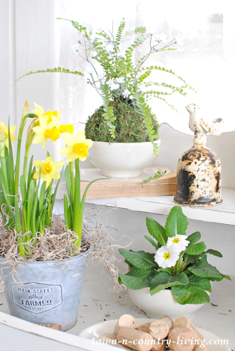 Spruce up your houseplants with creative planters and pots
