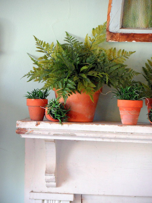 Plants in Terra Cotta Pots on a White Shabby Chic Mantel